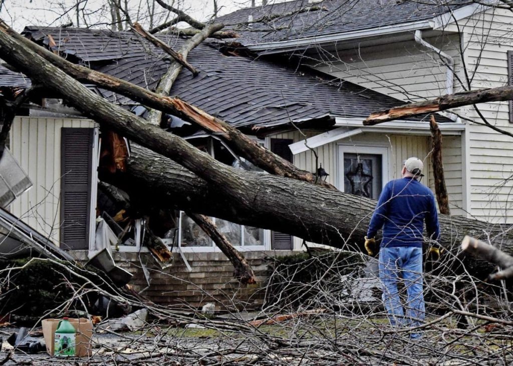 Storm Damage-Vista CA Tree Trimming and Stump Grinding Services-We Offer Tree Trimming Services, Tree Removal, Tree Pruning, Tree Cutting, Residential and Commercial Tree Trimming Services, Storm Damage, Emergency Tree Removal, Land Clearing, Tree Companies, Tree Care Service, Stump Grinding, and we're the Best Tree Trimming Company Near You Guaranteed!